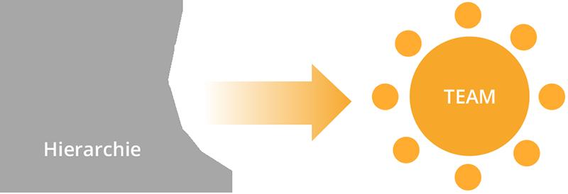 Grafik_hierarchie-team-1
