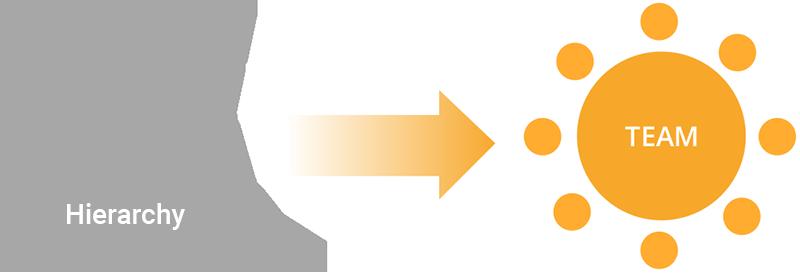 Grafik_hierarchie-team_en
